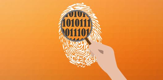 La OSI nos enseña a borrar identidad online